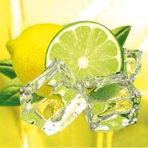 Купить Ароматизатор «Лимон-лайм» оптом и в розницу в Екатеринбурге
