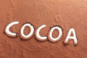 Купить Какао-порошок алкализованный Cargill (Германия) оптом и в розницу в Екатеринбурге